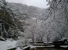 Χιόνια Λιβαδεια 1/2-2-2012_1