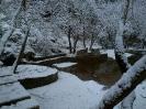 Χιόνια Λιβαδεια 1/2-2-2012_3