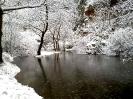 Χιόνια Λιβαδεια 1/2-2-2012_4