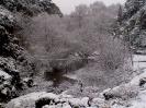 Χιόνια Λιβαδειά 1/2-2-2012_4_2