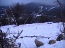 Χιονια Παναχαικό 15/2/2012 (400μ)_5