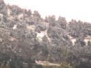 Χιονια Παναχαικό 10/2/2012_5