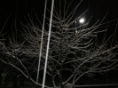 Σκεπαστό - 18-01-2013_9