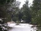 ΠΑΡΝΗΘΑ 1-3-2012_6