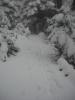 ΠΑΡΝΗΘΑ 17-2-2013_1