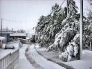 ΜΑΡΤΙΟΣ 2011-ΝΕΟΧΩΡΙ ΘΗΒΩΝ_1