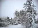 ΜΑΡΤΙΟΣ 2011-ΝΕΟΧΩΡΙ ΘΗΒΩΝ_2
