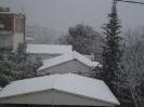 Μελίσσια χιονιάς 2012_1