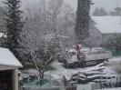 Μελίσσια χιονιάς 2012_2
