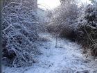 χιονι βαρσοβια