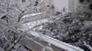 ΧΙΟΝΙΑΣ ΣΤΗΝ ΗΛΙΟΥΠΟΛΗ 17.2.2008_1