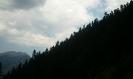 Πλάτανος Ορεινής Ναυπακτίας_1