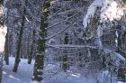 χιονια Παρνηθα φεβ 2015
