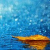 rain hd wallpapers