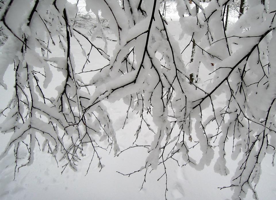 snow 2136186 960 720 copy