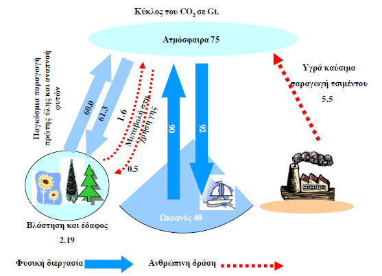 carbon-dioxide-cycle