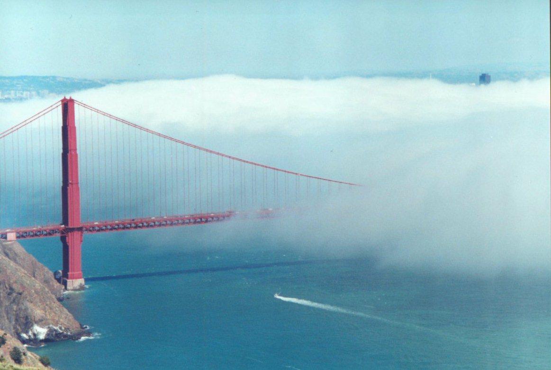fog metforas