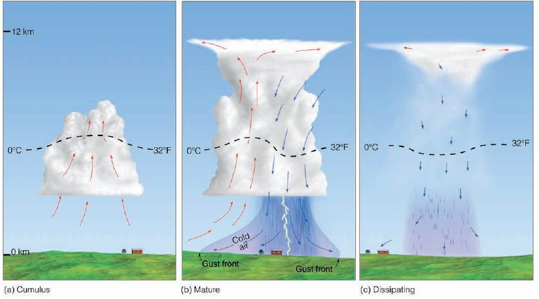 thunderstorm structure